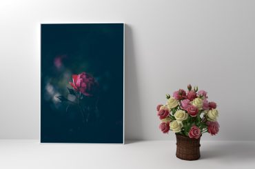 Frame Mockup With Roses In White Room